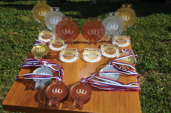 Utrinki tekmovanj 2011