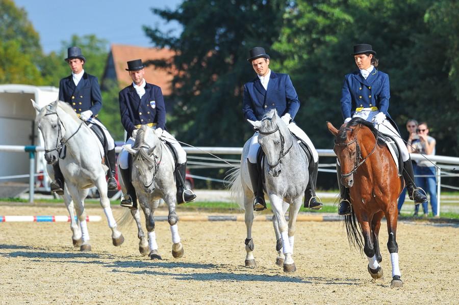 Dan odprtih vrat - Festival konjeništva